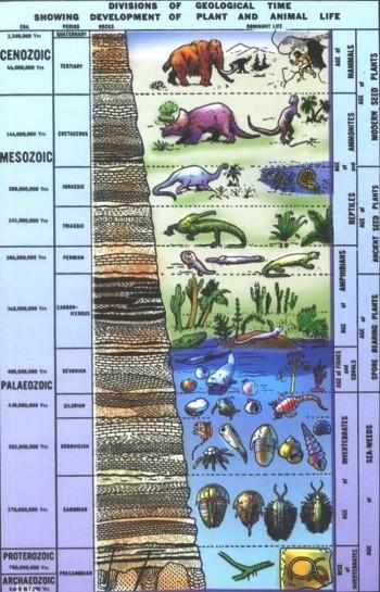 Ako sa stratigrafický datovania práce
